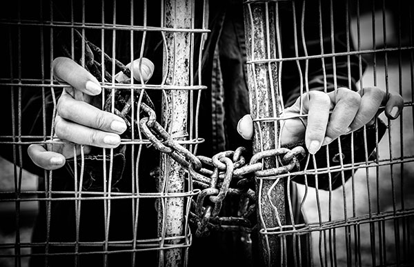 The impact of the Modern Slavery Act